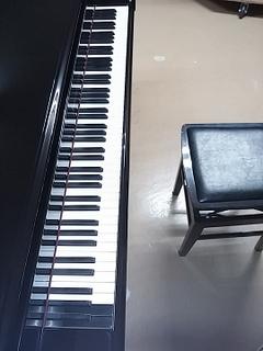 ベーゼン鍵盤リサイズ.jpg